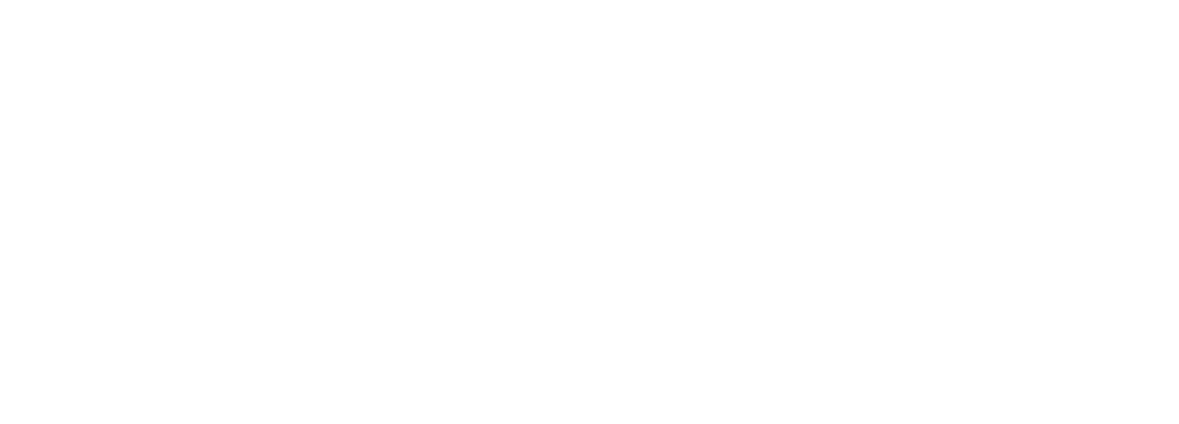 Strongsuit_Logo-Horizontal-White